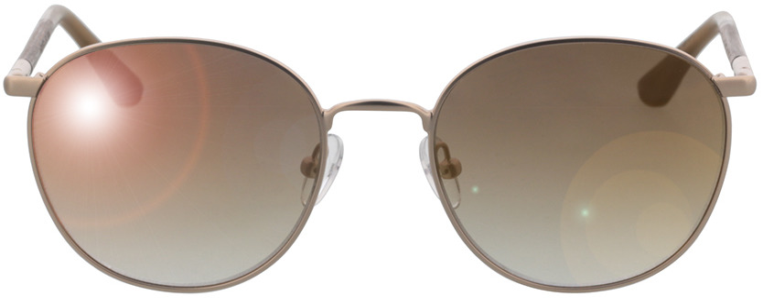 Picture of glasses model Wood Fellas Sunglasses Hub macassar/gold 53-19 in angle 0