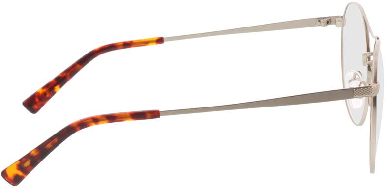 Picture of glasses model Leto-silber/havana in angle 90