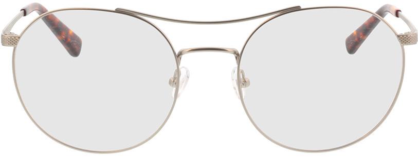 Picture of glasses model Leto-silber/havana in angle 0