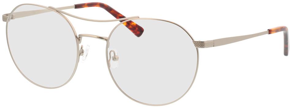 Picture of glasses model Leto-silber/havana in angle 330