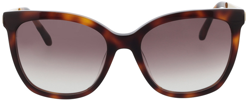 Picture of glasses model Calvin Klein CK21703S 240 55-18 in angle 0