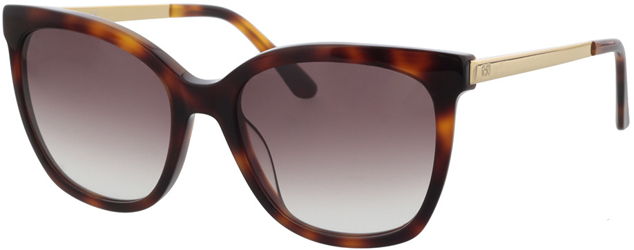 Picture of glasses model Calvin Klein CK21703S 240 55-18 in angle 330