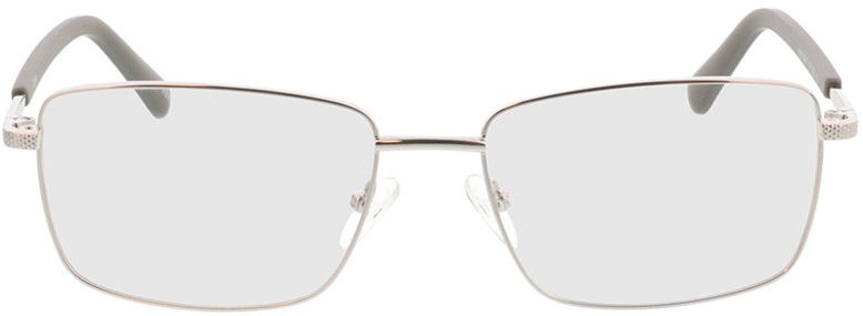 Picture of glasses model Molpa-argenté in angle 0