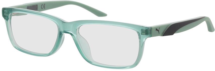 Picture of glasses model Puma PJ0058O-003 50-14 in angle 330