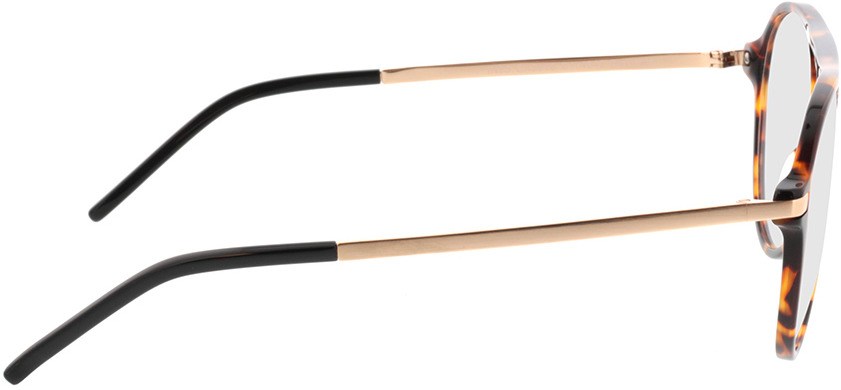 Picture of glasses model Baytown brown/mottled/gold in angle 90