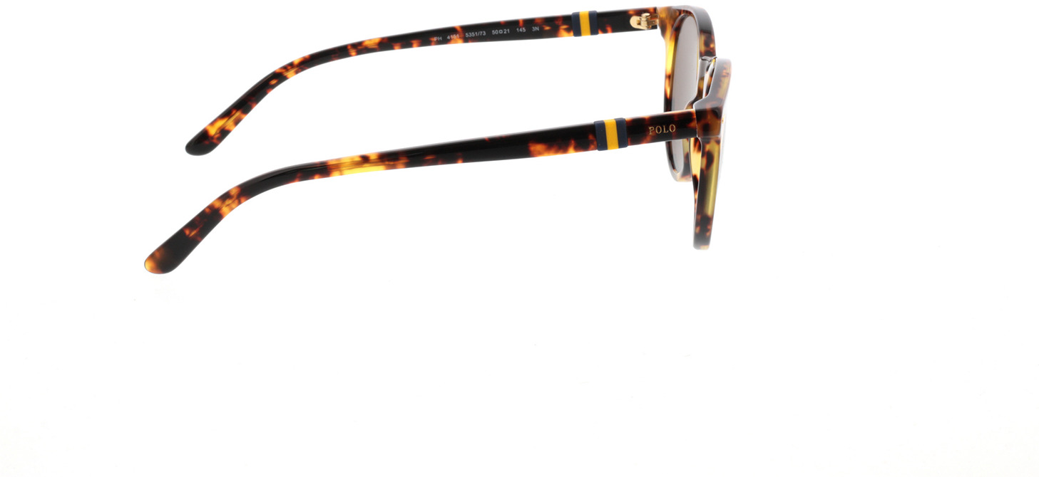 Picture of glasses model Polo Ralph Lauren PH4151 535173 50-21 in angle 90