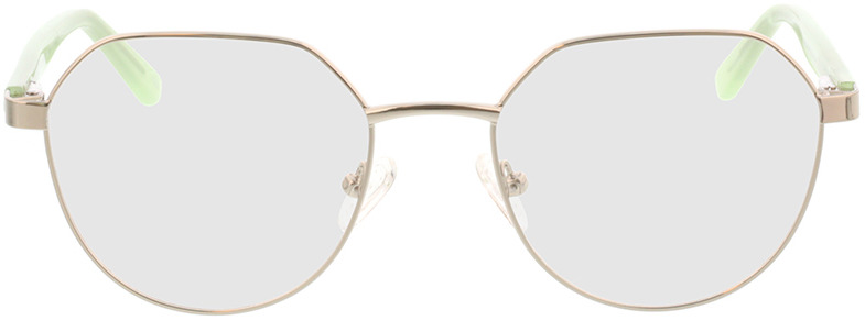 Picture of glasses model Pinto-silber/hellgrün in angle 0