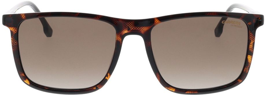 Picture of glasses model Carrera CARRERA 231/S 086 55-18 in angle 0