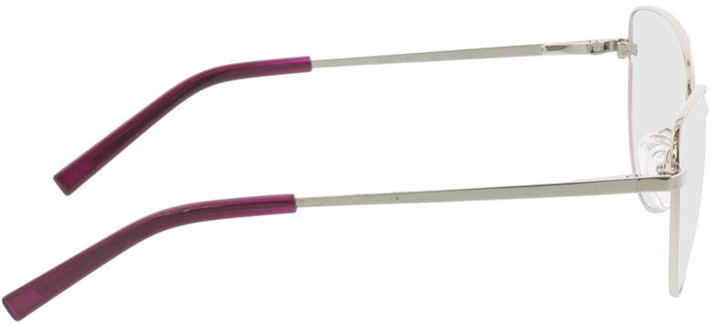 Picture of glasses model Elea-silber in angle 90