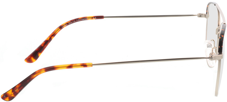 Picture of glasses model Salmone-matt silber in angle 90