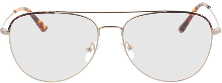 Picture of glasses model Salmone-matt silber in angle 0