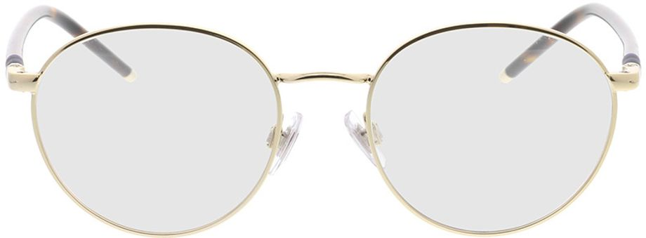 Picture of glasses model Polo Ralph Lauren PH1201 9116 50-18 in angle 0