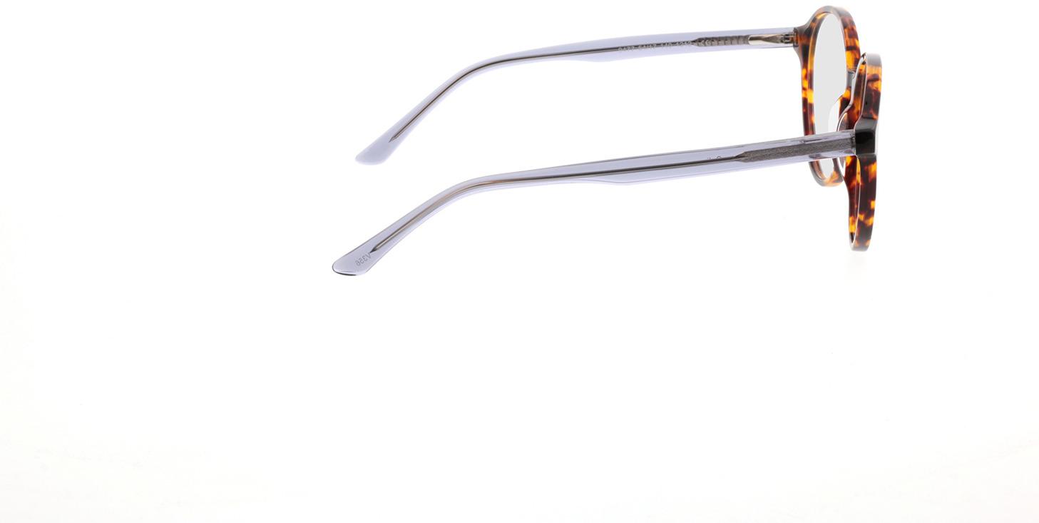 Picture of glasses model Cali havana/grijs transparant in angle 90