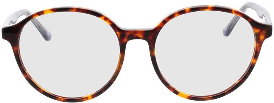 Picture of glasses model Cali-havana/grau-transparent in angle 0