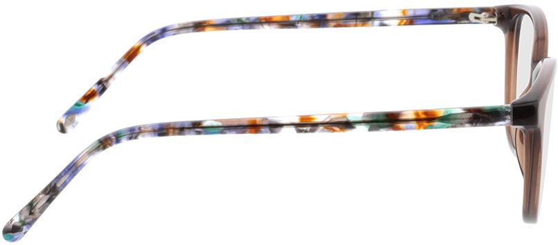 Picture of glasses model Dakota-braun-transparent in angle 90