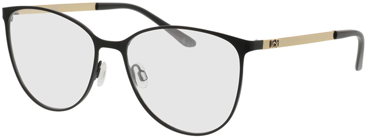 Picture of glasses model Calvin Klein CK20130 001 55-16 in angle 330