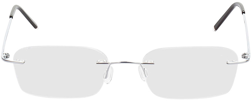 Picture of glasses model Salinas-silber in angle 0