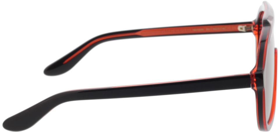 Picture of glasses model Gucci GG1038S-001 99-16 in angle 90