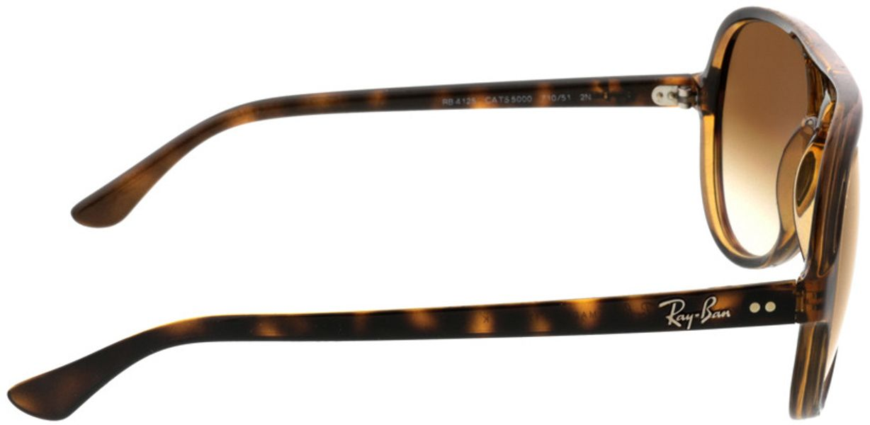 Picture of glasses model Ray-Ban CATS 5000 RB4125 710/51 59-13 in angle 90