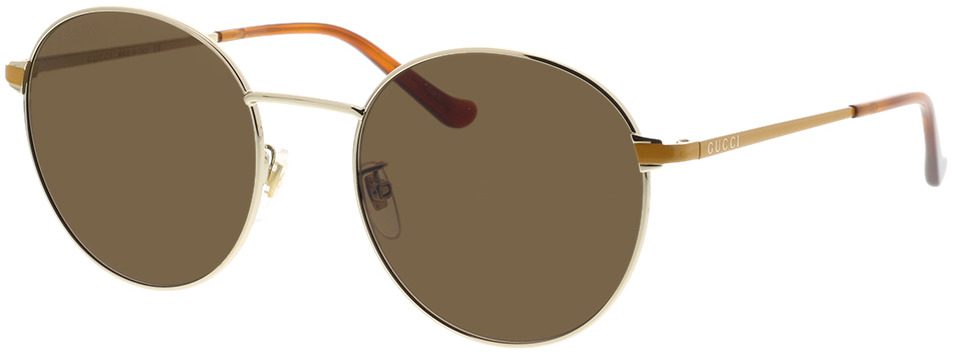 Picture of glasses model Gucci GG0574SK-004 55-20 in angle 330