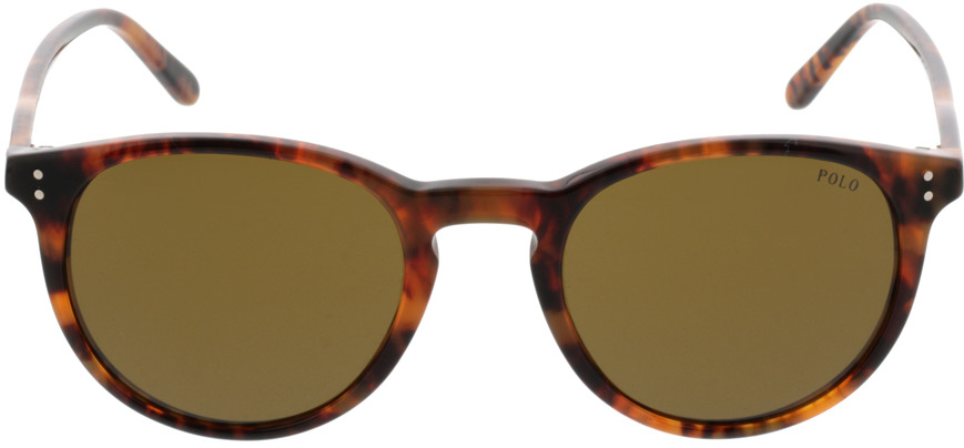 Picture of glasses model Polo Ralph Lauren PH4110 501773 50-21 in angle 0