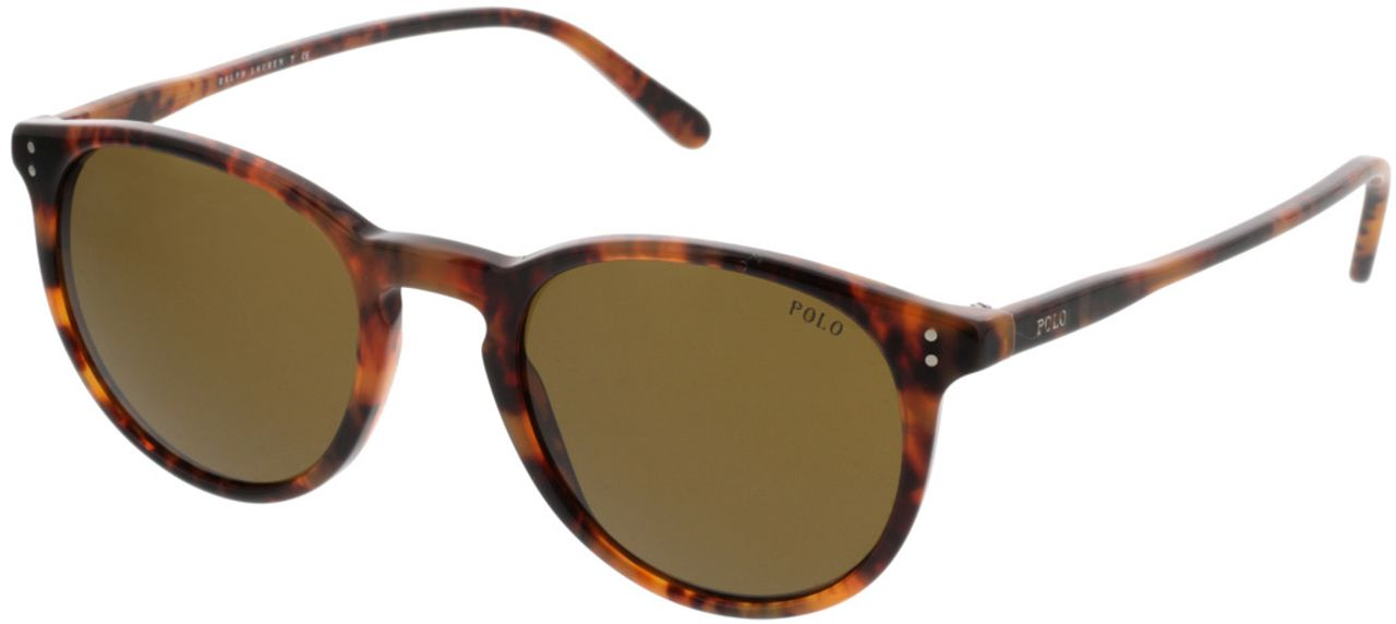 Picture of glasses model Polo Ralph Lauren PH4110 501773 50-21 in angle 330