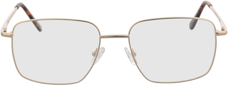 Picture of glasses model Spencer-gold in angle 0