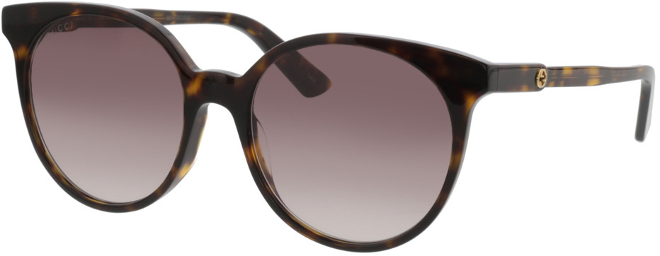 Picture of glasses model Gucci GG0488S-002 54-18 in angle 330
