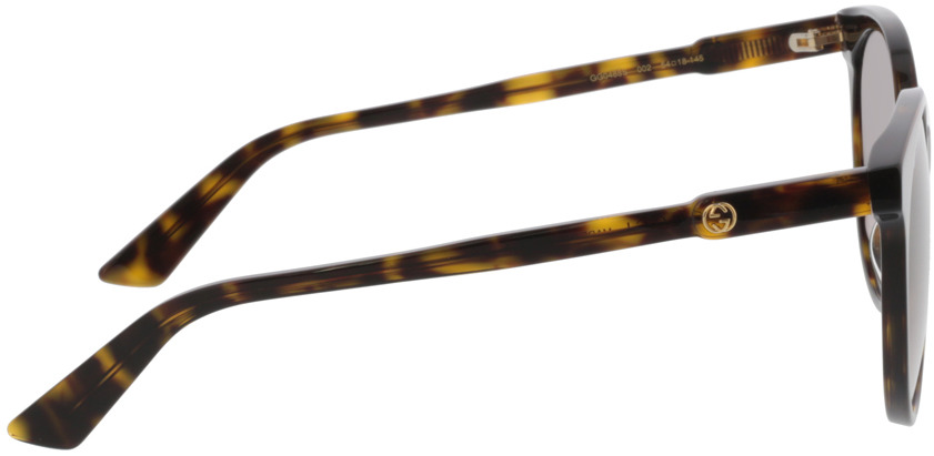 Picture of glasses model Gucci GG0488S-002 54-18 in angle 90