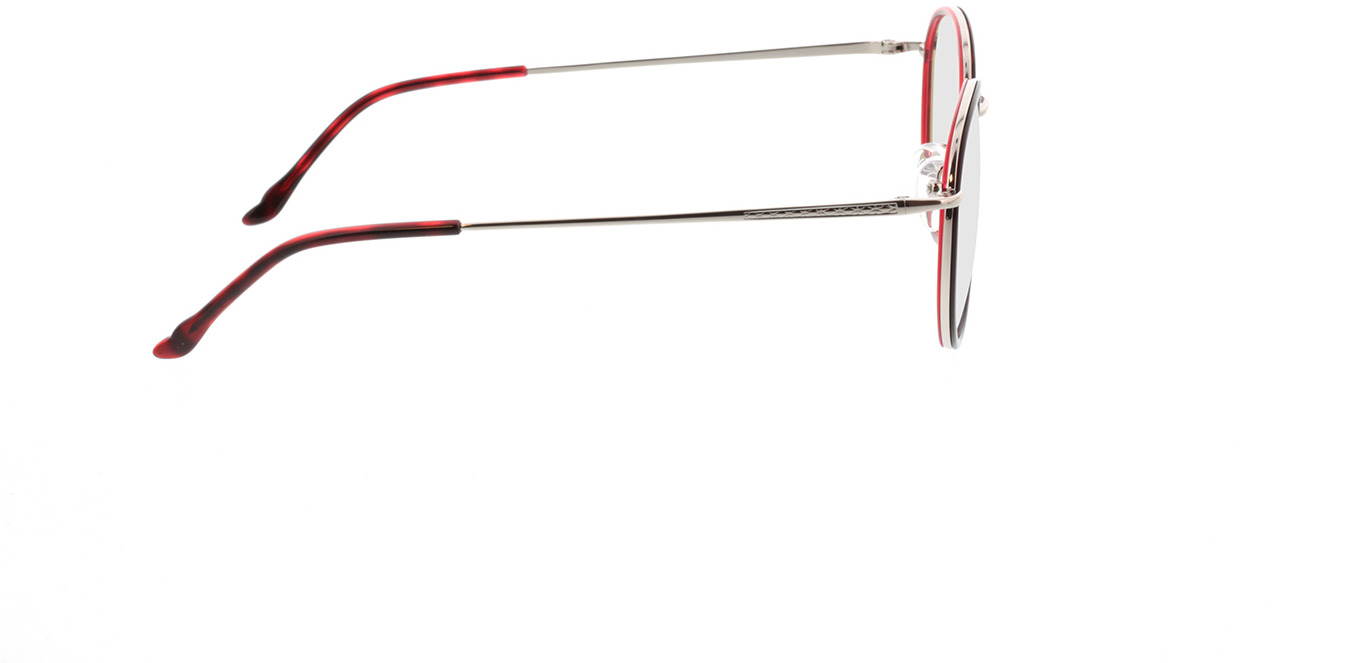 Picture of glasses model Valby-rot/silber in angle 90