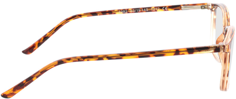 Picture of glasses model Argos-braun-meliert/transparent in angle 90