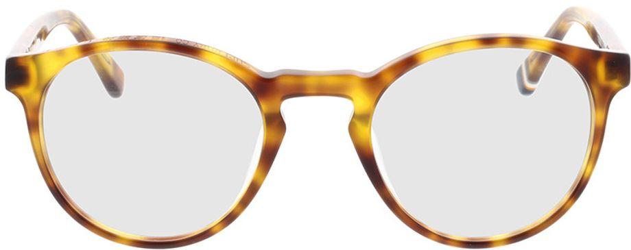 Picture of glasses model Superdry SDO Goro 102 havanna 48-21 in angle 0