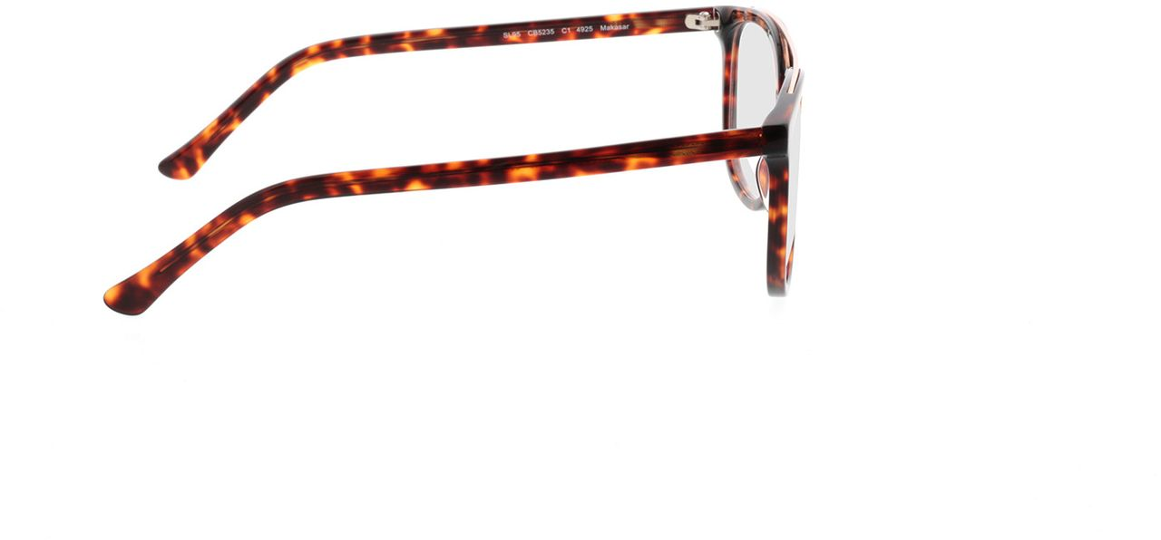 Picture of glasses model Makasar-braun-meliert in angle 90