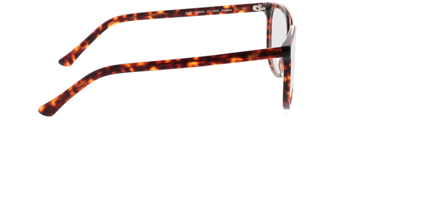 Picture of glasses model Makasar-brun marbré in angle 90