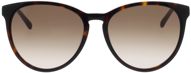 Picture of glasses model Tommy Hilfiger TH 1724/S 086 56-17 in angle 0