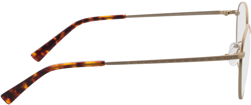 Picture of glasses model Lucas mat Goud in angle 90