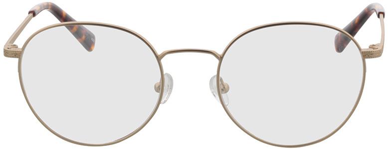 Picture of glasses model Lucas-matt gold in angle 0