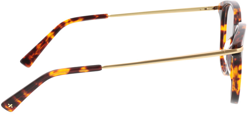 Picture of glasses model Sienna-braun-meliert/gold in angle 90
