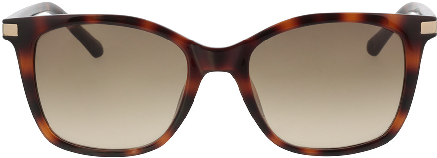 Picture of glasses model Calvin Klein CK19527S 240 54-19 in angle 0