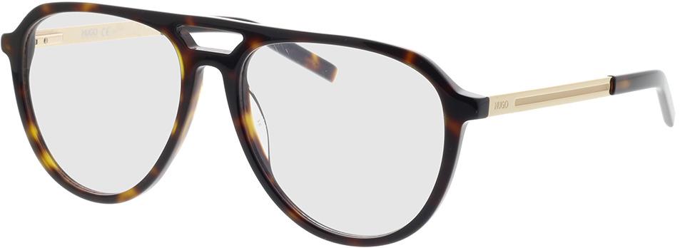 Picture of glasses model Hugo HG 1093 086 55-16 in angle 330
