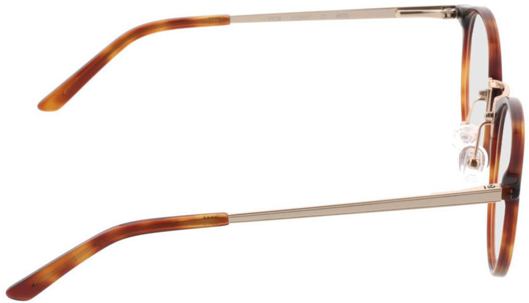 Picture of glasses model Bedford-brown-mottled-gold in angle 90
