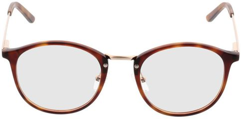 Picture of glasses model Bedford-brown-mottled-gold in angle 0