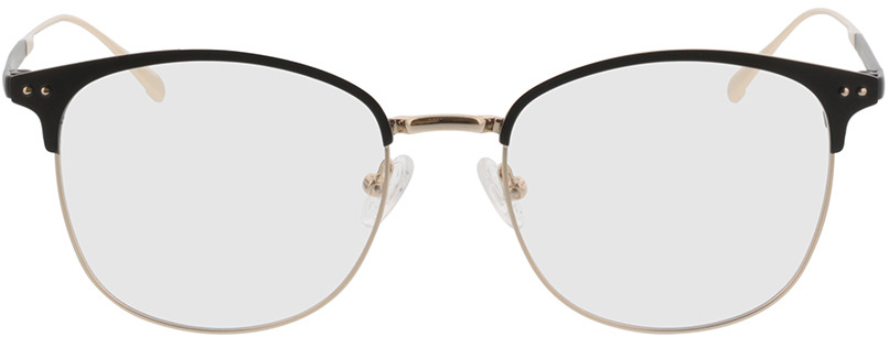 Picture of glasses model Hampton-noir/or in angle 0