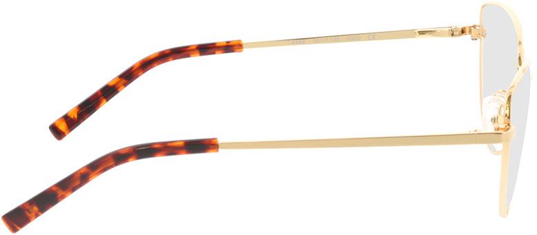 Picture of glasses model Elea-gold in angle 90