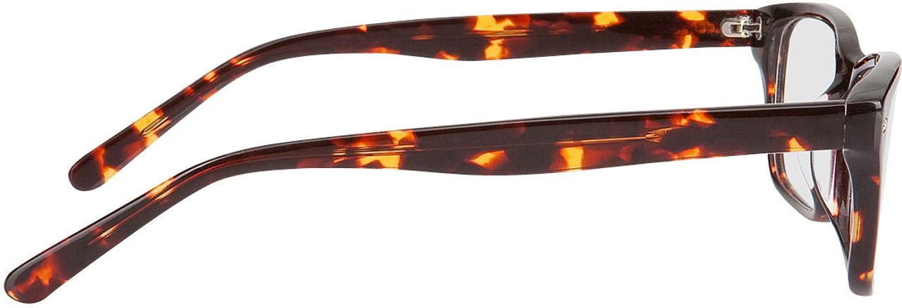 Picture of glasses model Santos brown/mottled in angle 90