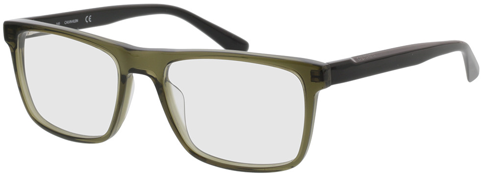 Picture of glasses model Calvin Klein CK20531 310 54-18 in angle 330