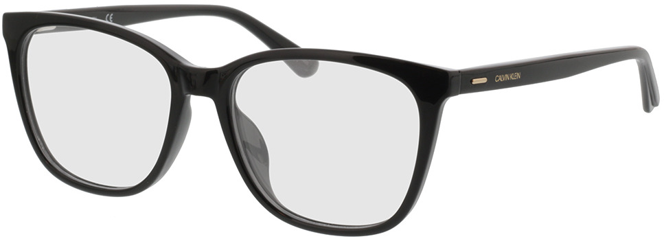 Picture of glasses model Calvin Klein CK20525 001 53-16 in angle 330
