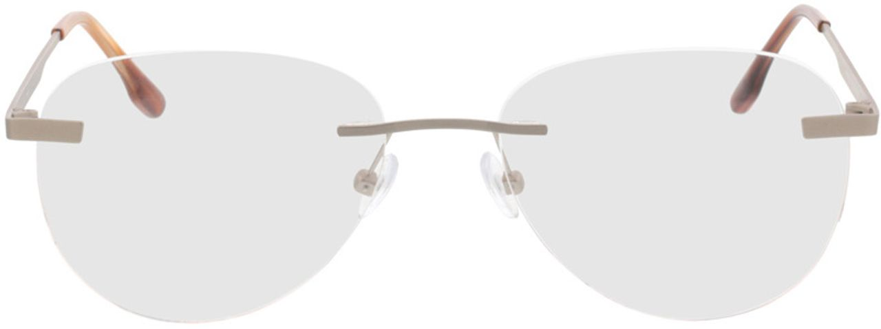 Picture of glasses model Nova-matt silber  in angle 0