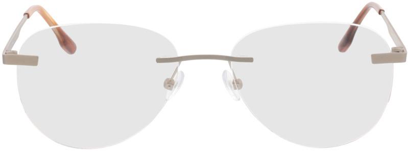 Picture of glasses model Nova-argenté mat in angle 0
