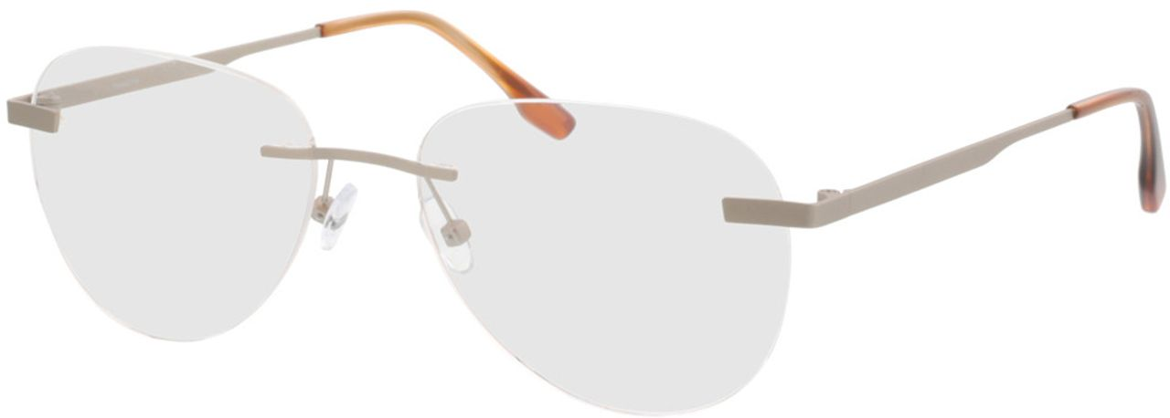 Picture of glasses model Nova-matt silber  in angle 330